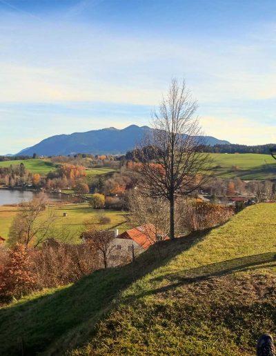 Ferienwohnungen Schuster-Bestl in Bad Bayersoien Blick auf Soier See