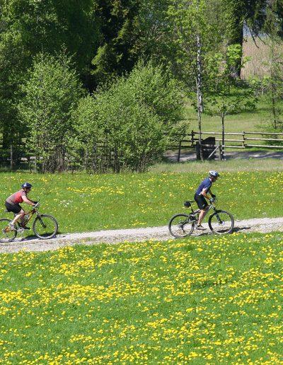 Viele Radwege rund um Bad Bayersoien