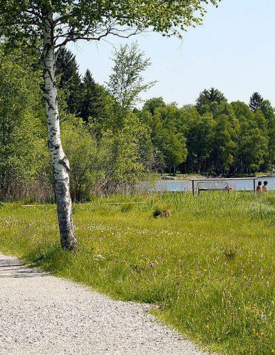Wanderung-Soier-See